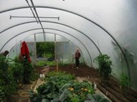 Omagh_greenhouse