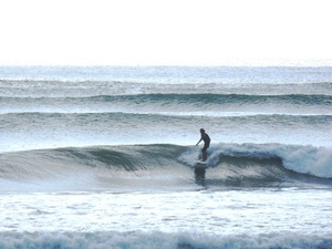 Loscardones_surfing
